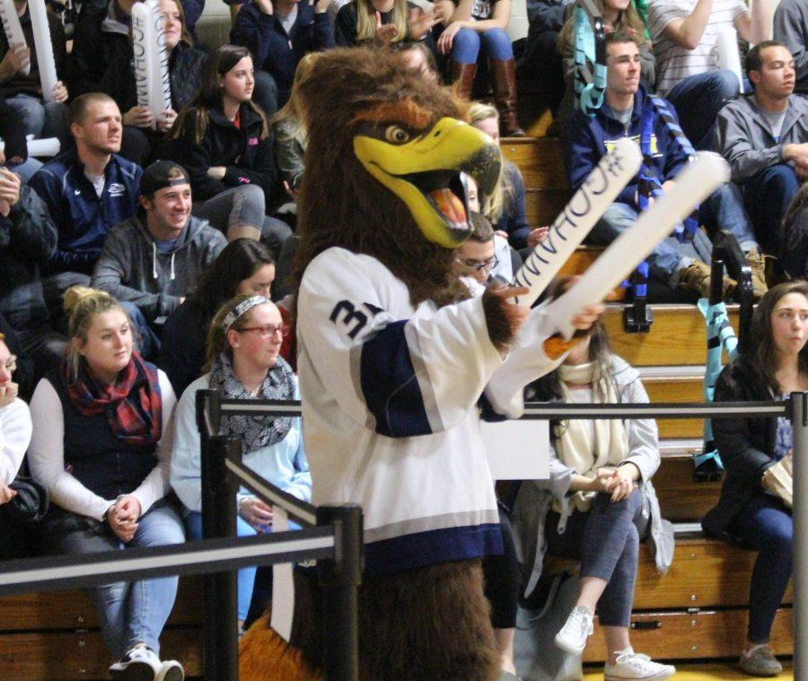 The+Saint+Anselm+Hawk+mascot+pictured+at+a+pep+rally+in+Stoutenburgh+Gym+last+year.
