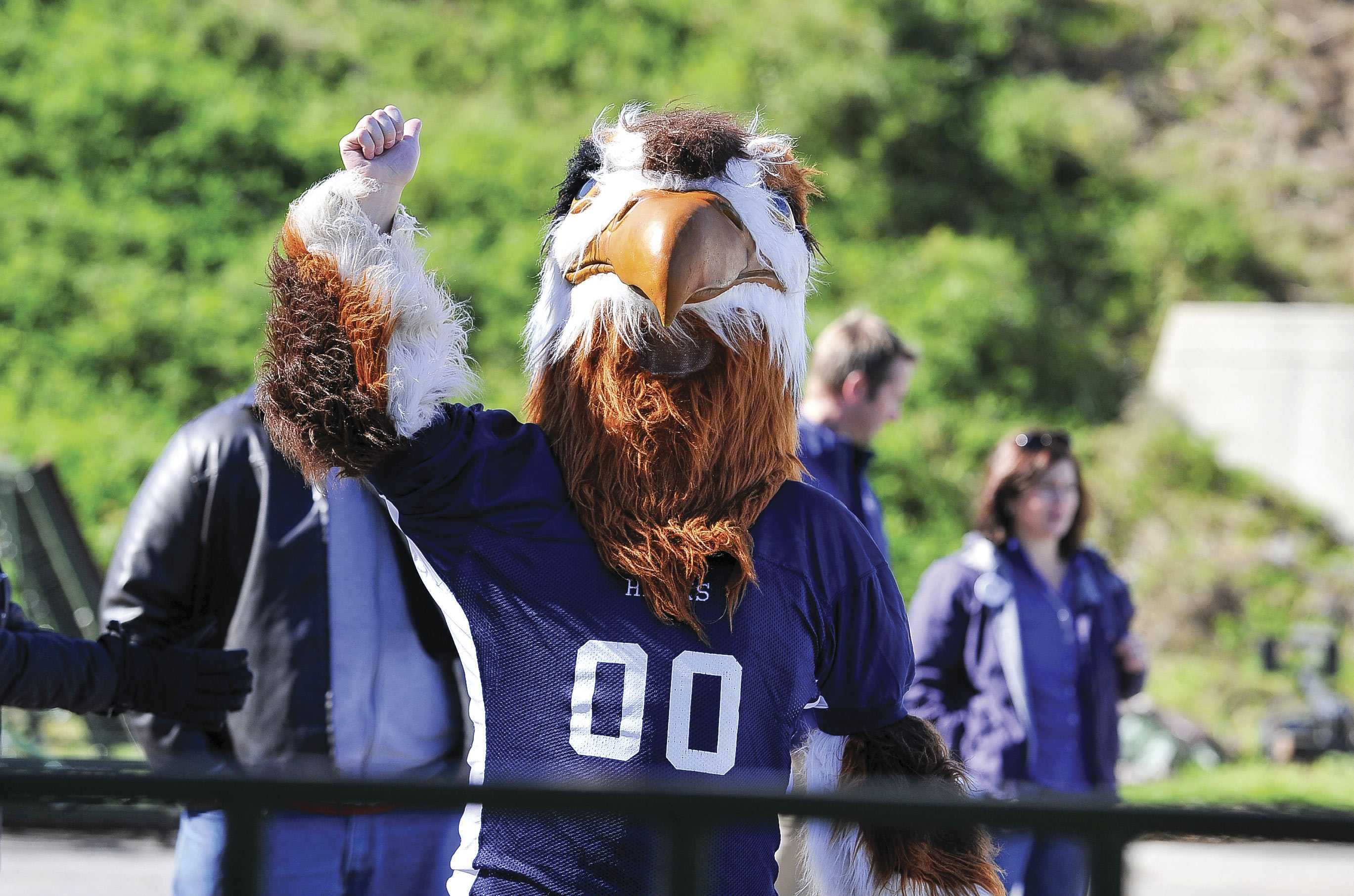 The Saint Anselm Hawk mascot.