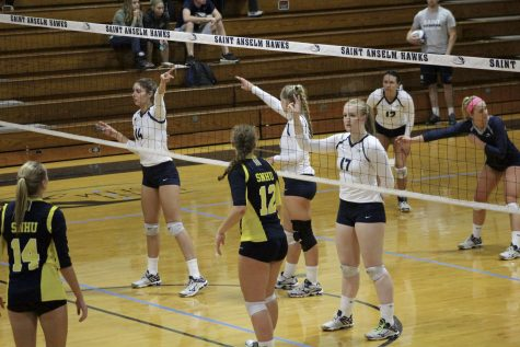 Volleyball falls in NE-10 Quarterfinals, loses to Adelphi