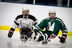 Men's Club Ice Hockey takes on Sled Hockey team from New Hampshire at Sullivan Arena