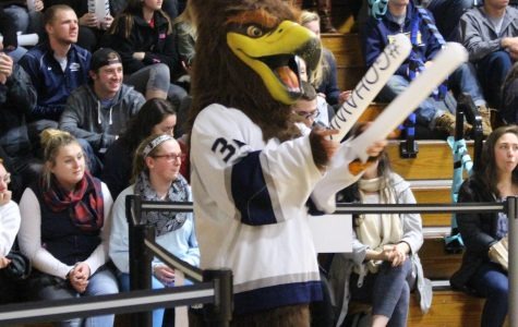 The Saint Anselm Hawk mascot pictured at a pep rally in Stoutenburgh Gym last year.