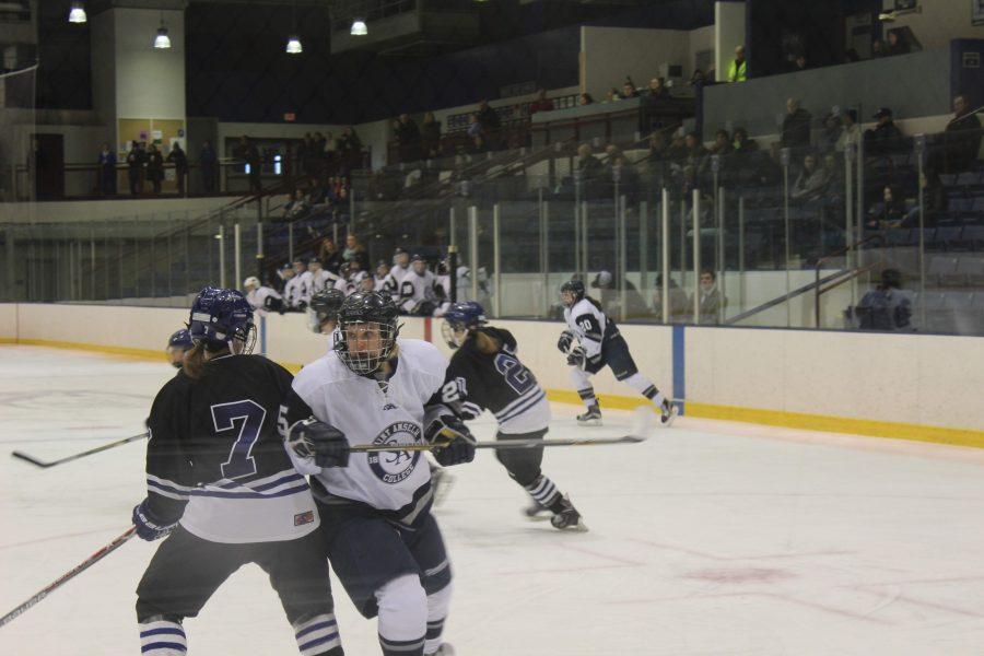 Junior Paige Gorecki on ice for the Hawks against UNE.
