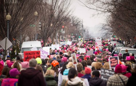 Some signs from the Women's March in D.C. were the subject of a previous article.