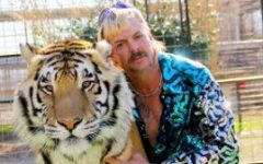 Lions, Tigers, and Joe Exotic- Oh My!